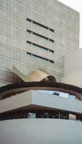Guggenheim Canopy in NYC.