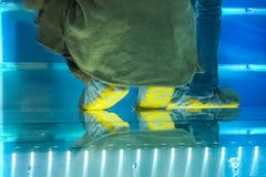 Visitors walk across the raised glass floor in custom shoe-covers.