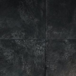 2ba9ba58 ff8f 4d55 8733 8623a0225409%2fblackened steel