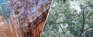 Perforated metal trees