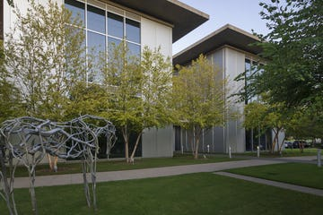 View of the Modern with Deborah Butterfield bronze horse sculpture
