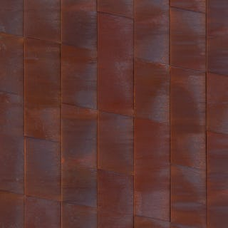 Solanum Steel™