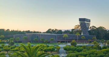 10th Anniversary of the New de Young Museum and its Sheet Metal Magic